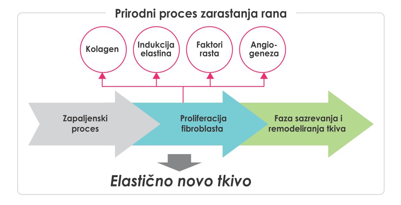 dr marija boskovic - mesotrax
